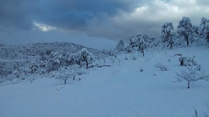 Yakouren en neige