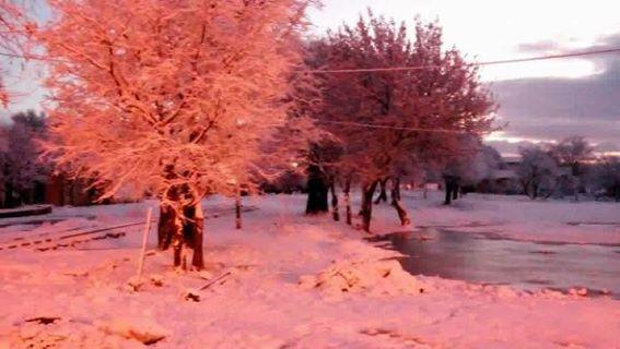 la neige dans la commune de Berrouaghia
