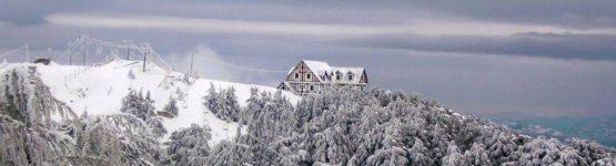 Chréa en neige