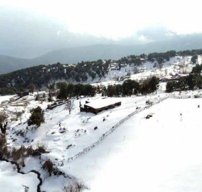 la neige à Seraïdi annaba