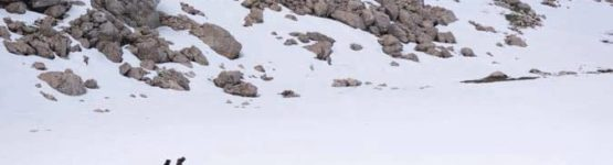 neige au Lac Agoulmime