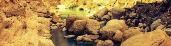 Oasis M'Chounèche sud algérien